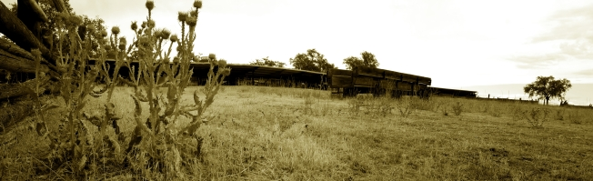 ImageAntelop Island Ranch BW 0011
